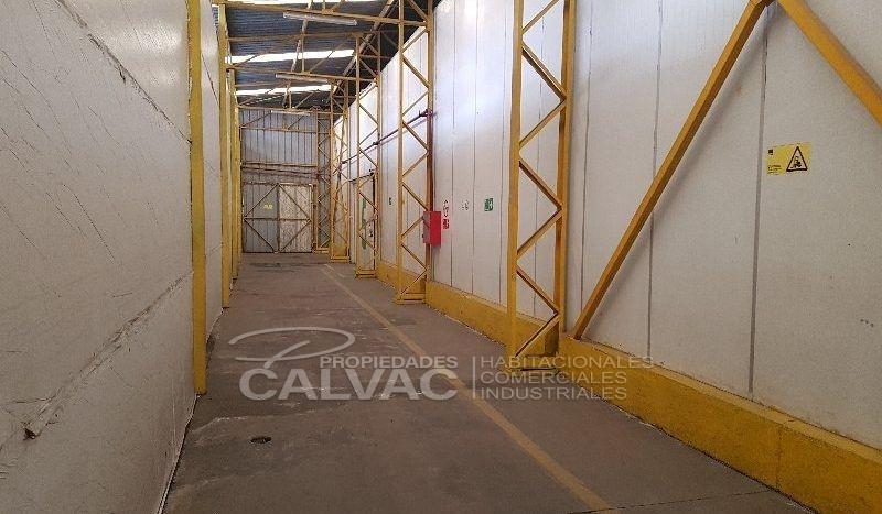 frigorifico-peñaflor09-1-800x467