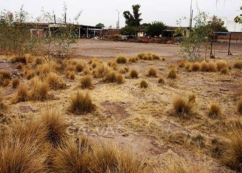vende-sitio-industrial-en-maipu5