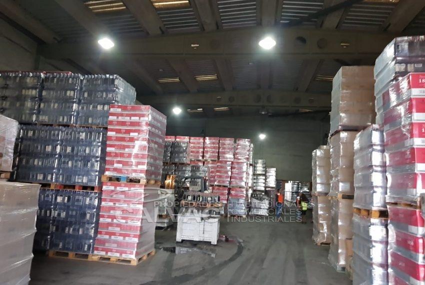 Arriendo-propiedad-industrial-con-galpon-oficinas-San-Bernardo-1