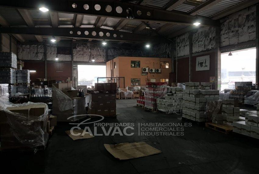 Arriendo-propiedad-industrial-con-galpon-oficinas-San-Bernardo-8