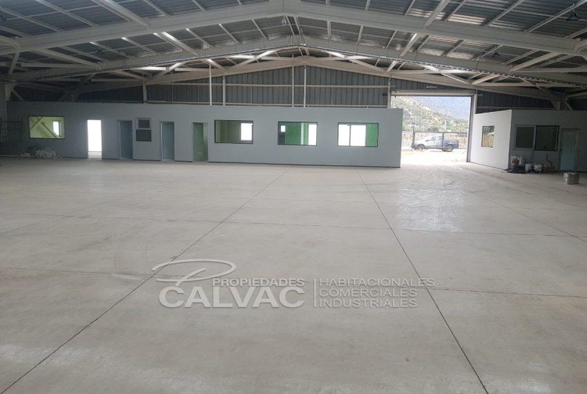 Venta-de-Galpon-con-Oficina-en-Curacavi-8