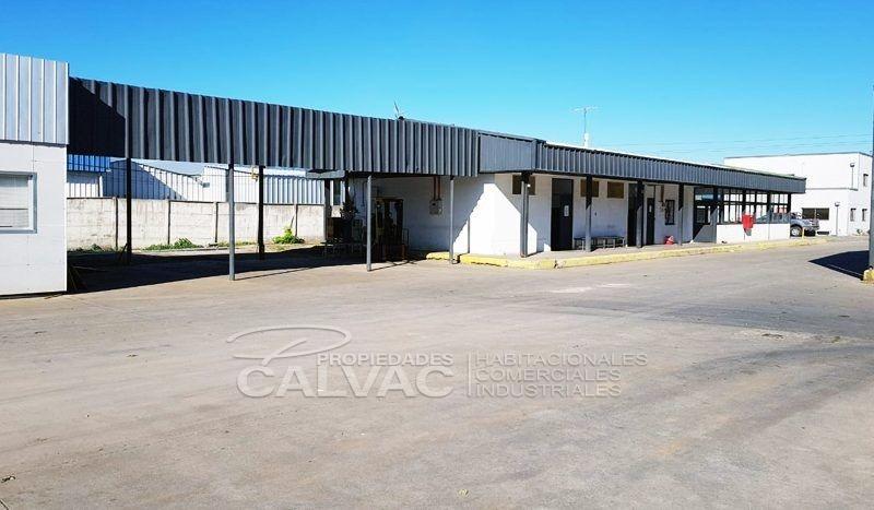 propiedad-industrial-en-paine1-800x467
