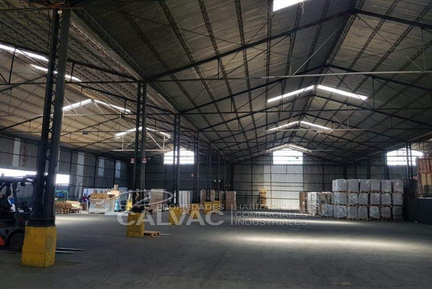 Propiedad-Industrial-con-galpón-en-El-Olivar-Rancagua-3