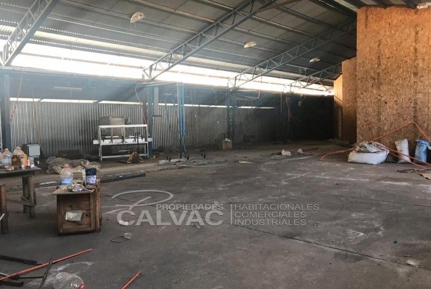 venta-propiedad-industrial-en-san-carlos-nuble-3