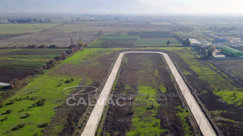 paisaje1